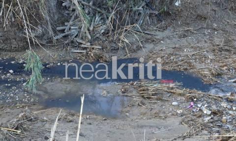 Ηράκλειο: «Πάγωσαν» οι κάτοικοι με το θέαμα στο Γαζανό ποταμό (pics)