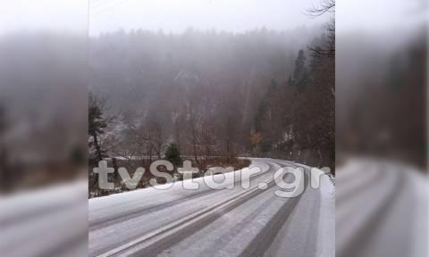 Καιρός: Το «έστρωσε» στην Εύβοια - Υπέροχες εικόνες (pics)