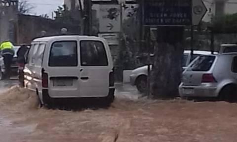 Καιρός: Έπεσαν δέντρα – Πλημμύρισαν δρόμοι στα Χανιά (pics+vid)