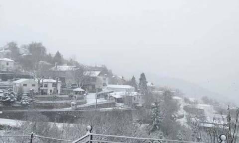 Καιρός:  Στα λευκά «ντύθηκε» ο Κίσσαβος (pics+vid)