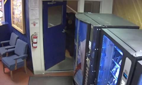 Απρόσμενος επισκέπτης έκανε «ντου» σε αστυνομικό τμήμα στην Καλιφόρνια (vid)