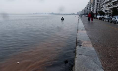 Θεσσαλονίκη: Βούτηξαν στον Θερμαϊκό για βλήμα και έβγαλαν… μπουκάλι!