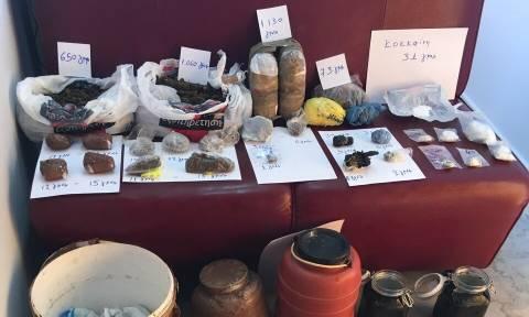 Άρτα: Εγκληματική οργάνωση διακινούσε χασίς και κοκαΐνη - Κατασχέθηκαν χρήματα, ΙΧ κι ένα σκάφος!