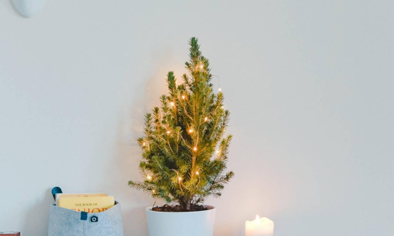 Χριστουγεννιάτικες ιδεές διακόσμησης για εσένα που δε θες το κλασσικό δέντρο