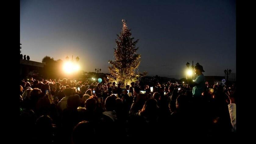 Χριστούγεννα 2018: Φωταγωγήθηκε χριστουγεννιάτικο δέντρο στο Μάτι