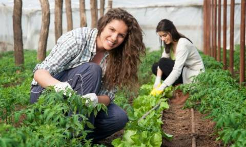 ΟΠΕΚΑ: Πότε θα λάβουν οι αγρότισσες πολύτεκνες μητέρες το επίδομα