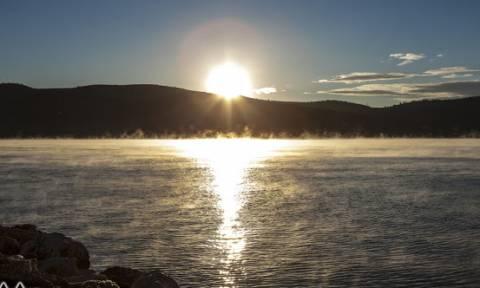 Αστακός: Σπάνιo φαινόμενο στην επιφάνεια της θάλασσας (pics)
