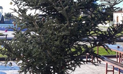 Άργος: Έκλεψαν τον στολισμό από χριστουγεννιάτικο δέντρο (pics)