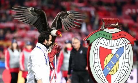 Ο επιβλητικός αετός της Μπενφίκα πέταξε και στον αγώνα με την ΑΕΚ (photos)