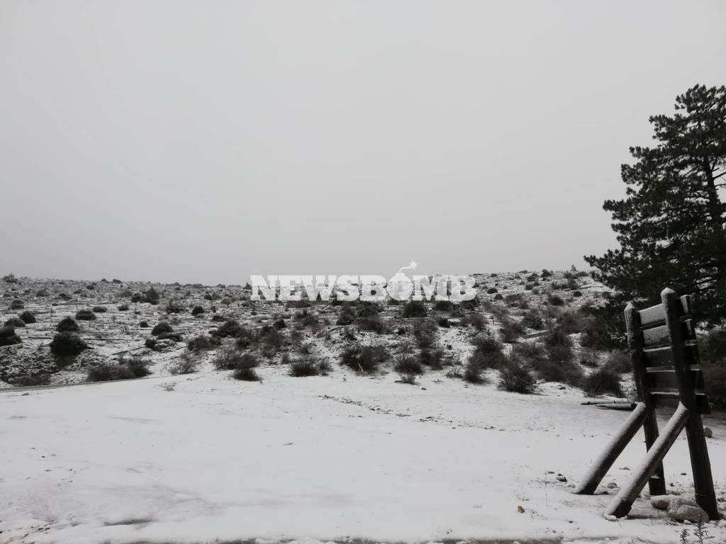 Ο χιονιάς «κύκλωσε» την Ελλάδα: Τσουχτερό κρύο και λευκό τοπίο στη μισή χώρα