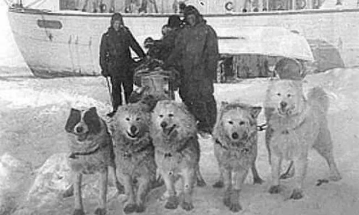 Σαν σήμερα το 1911 ο Ρόαλντ Αμούνδσεν φτάνει πρώτος στο Νότιο Πόλο