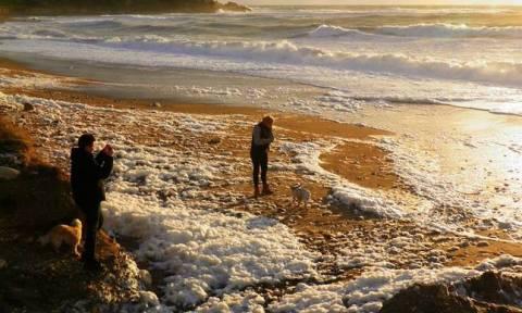 Σε ποια παραλία της Κύπρου εμφανίστηκε σπάνιο φαινόμενο (pics)