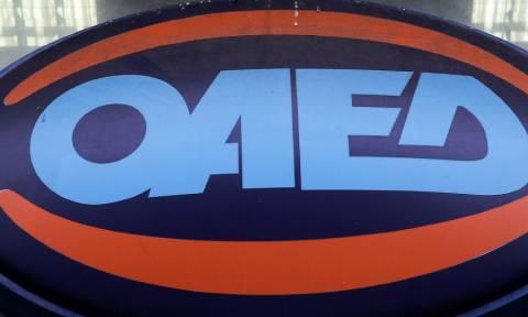 ΟΑΕΔ: Βγήκαν τα αποτελέσματα για 2.082 προσλήψεις ανέργων
