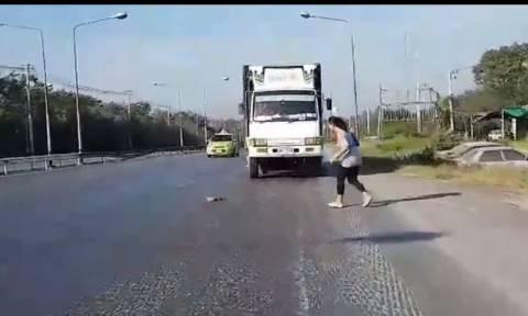 Συγκινητική διάσωση γάτας σε πολυσύχναστο δρόμο (vid)