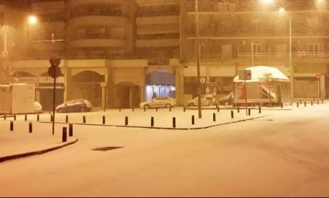 Καιρός: Πυκνή χιονόπτωση στην Κοζάνη - Κλειστά έμειναν τα σχολεία (vid)