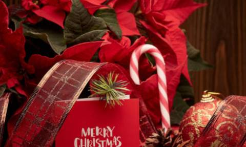 Χριστουγεννιάτικες αγορές: Τι πρέπει να προσέξουν καταναλωτές και επιχειρηματίες