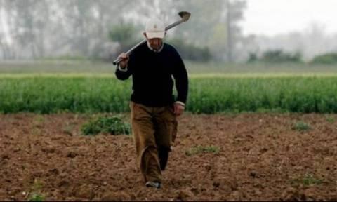 ΟΠΕΚΕΠΕ: Μπλόκαρε η καταβολή της επιδότησης στους αγρότες