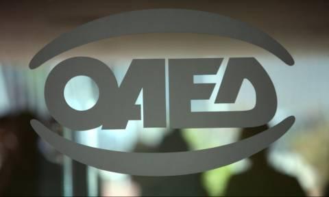 ΟΑΕΔ: «Μάστιγα» η ανεργία - Νέο ρεκόρ στα ποσοστά εγγεγραμμένων ανέργων το Νοέμβριο (vid)