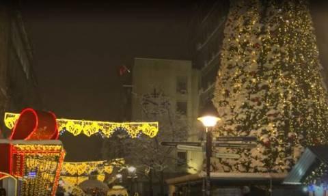 Αυτό είναι το πιο ακριβό χριστουγεννιάτικο δέντρο στον κόσμο! (vid)