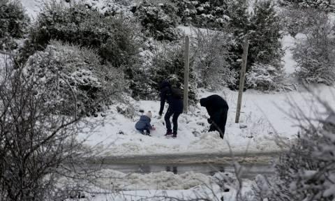 Καιρός: Στο «ψυγείο» η χώρα - Τσουχτερό κρύο και την Πέμπτη - Σε ποιες περιοχές θα χιονίσει