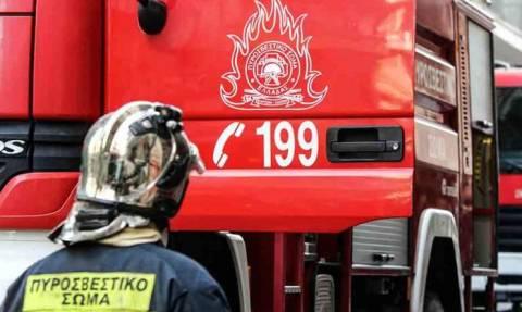 Συναγερμός στην Πυροσβεστική – Καίγεται εργοστάσιο στη Λάρισα (pic+vid)