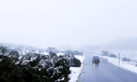 Καιρός - «Ραφαήλ»: Έτσι θα σκεπάσει το πολικό ψύχος τη χώρα - Χιόνια και στην Αττική (ΧΑΡΤΕΣ)