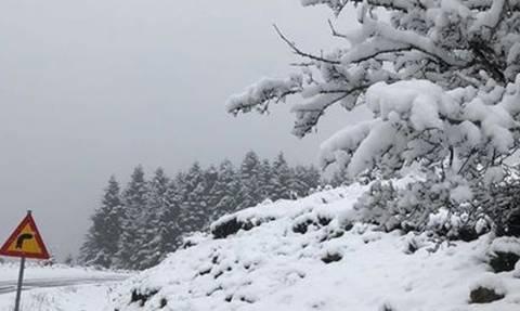 Καιρός: Η πρώτη εικόνα από την ΕΜΥ για την ψυχρή εισβολή της Πέμπτης και τις χιονοπτώσεις (video)