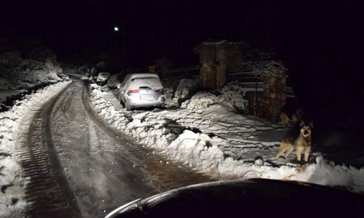 Καιρός: Σφοδρή χιονόπτωση σε Φθιώτιδα, Ευρυτανία και Φωκίδα - Πού χρειάζονται αλυσίδες