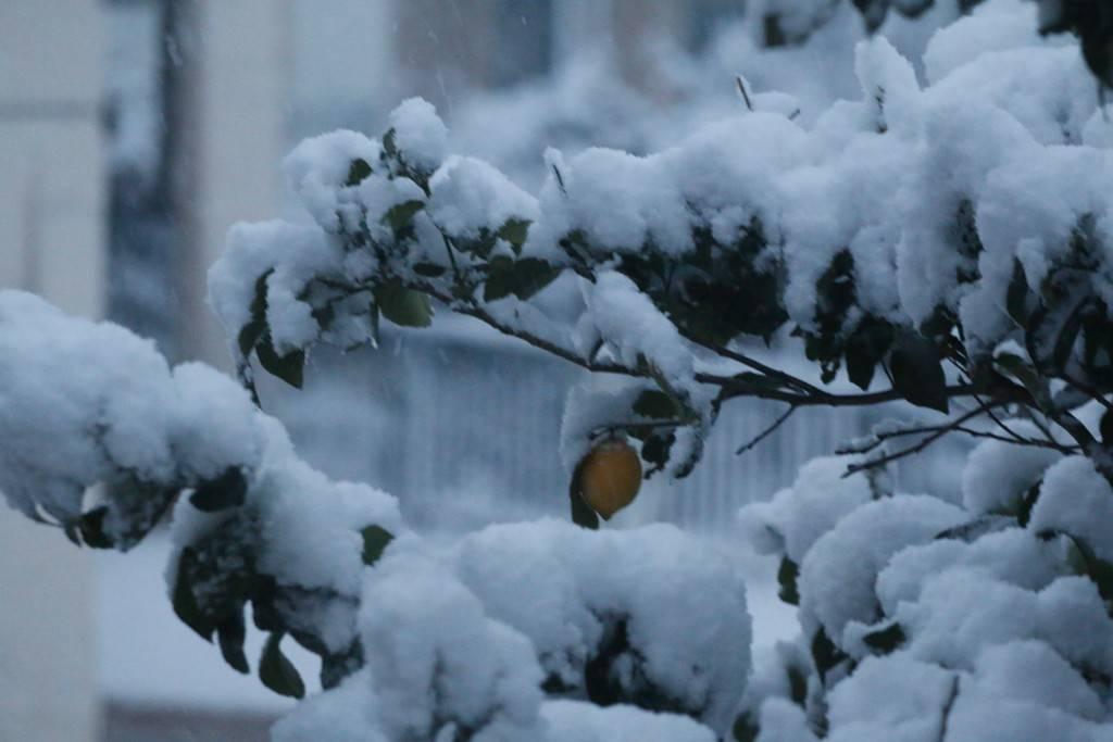 Καιρός: Πρωτοχρονιά με χιόνια και πολύ κρύο - Ποιες περιοχές είναι στο «μάτι» της κακοκαιρίας