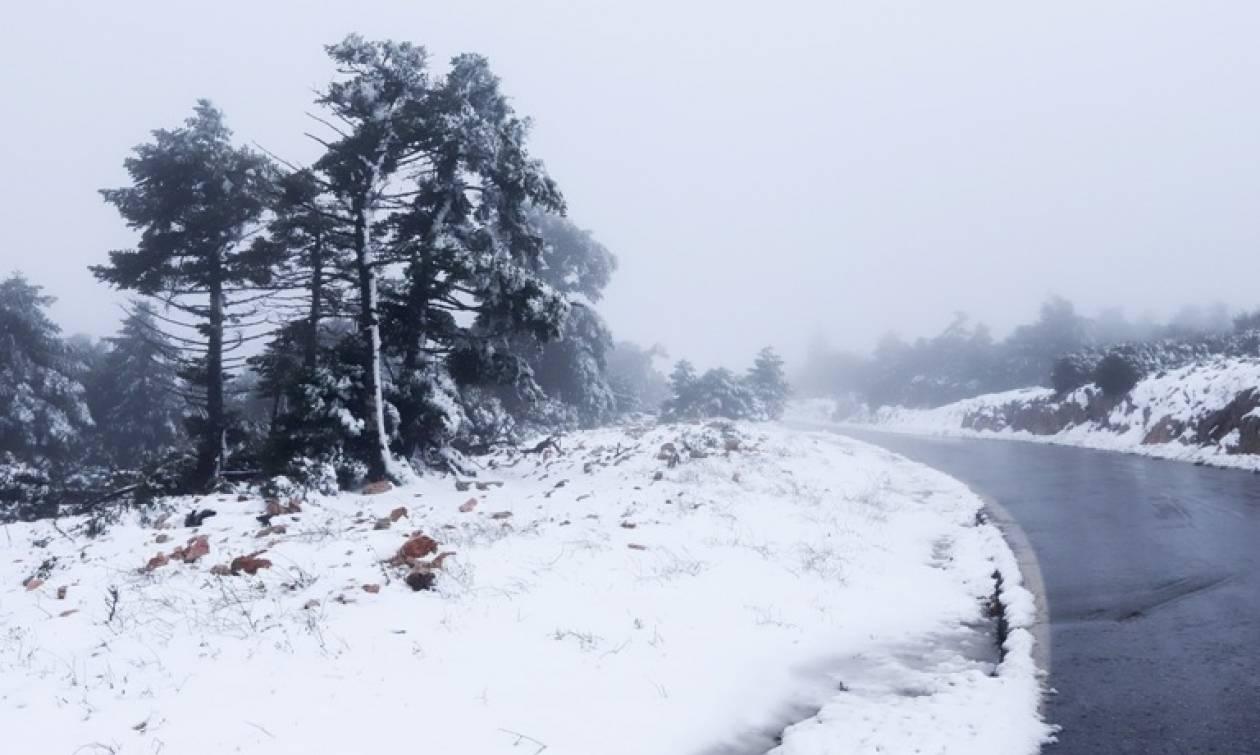 Καιρός: Μετεωρολογική «βόμβα» στη χώρα μας - Πυκνές χιονοπτώσεις και θερμοκρασίες στους -17 (ΧΑΡΤΗΣ)