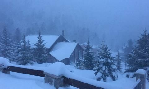 Καιρός: Kλειστό το χιονοδρομικό κέντρο Αράχωβας (pics+vid)