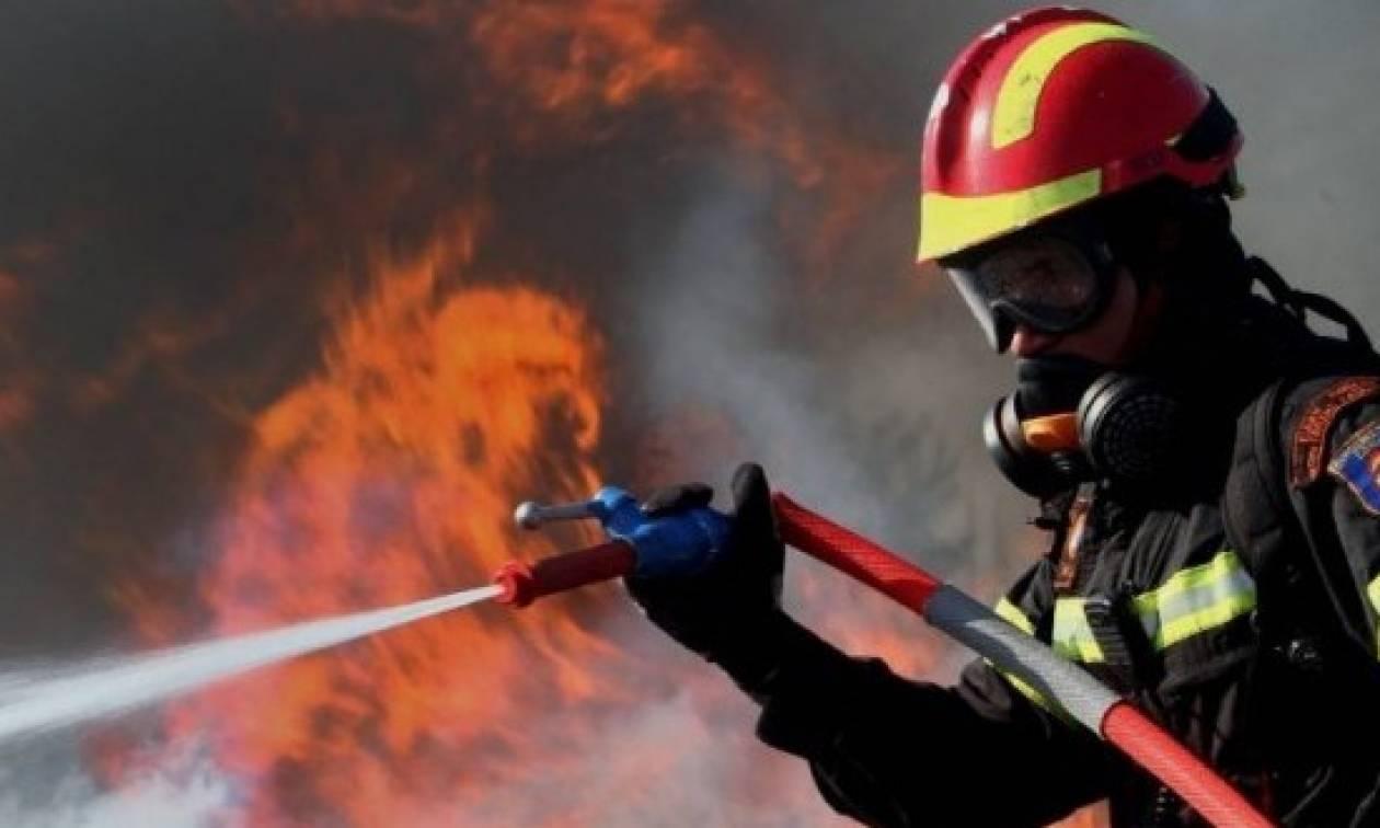 Ζαχάρω: Μεγάλη φωτιά σε κατοικία (pics)