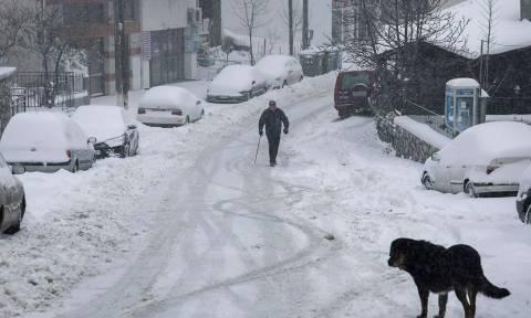 Καιρός: Τι πρέπει να προσέξετε σε περίπτωση παγετού και χιονοθύελλας