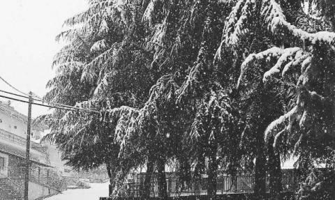 Καιρός: Η εξέλιξη των ισχυρών χιονοπτώσεων τις επόμενες ώρες. Η ενημέρωση του Τάσου Αρνιακού (video)