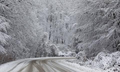 Καιρός: Νέος χιονιάς από τη Δευτέρα στη χώρα. Η πρώτη εικόνα από την ΕΜΥ...