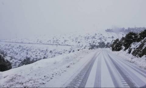 Καιρός ΤΩΡΑ: Πυκνή χιονόπτωση στην Πάρνηθα - Κλειστός ο δρόμος από το τελεφερίκ (pics+vid)