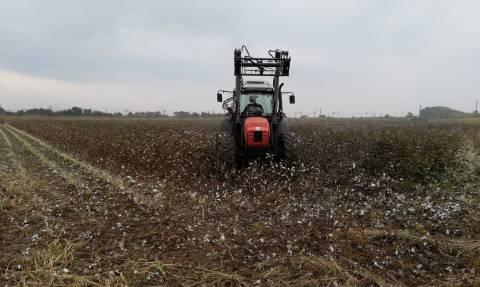 Αυτές είναι οι εισφορές των αγροτών στον ΕΦΚΑ για το 2019