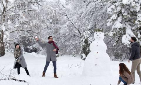 Είσαι σίγουρος ότι θέλεις να παίξεις χιονοπόλεμο μαζί τους;