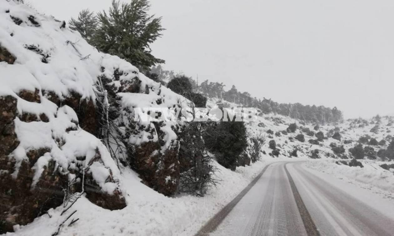 Καιρός ΤΩΡΑ: Πλησιάζει την Αθήνα το βαρομετρικό – Πυκνή χιονόπτωση στη Βοιωτία και προβλήματα