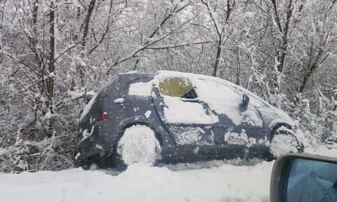 Κακοκαιρία: Οχήματα γλίστρησαν στα χιόνια και βγήκαν εκτός δρόμου στα Φάρσαλα (pics)