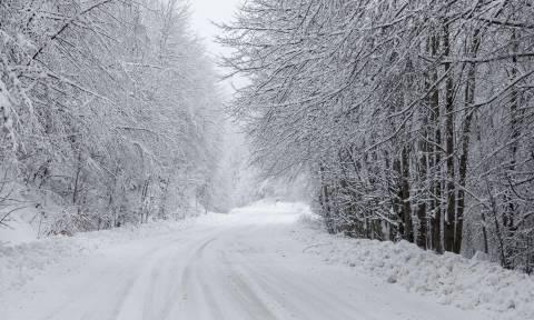 Ναύπακτος: Αγωνία για 6μελη οικογένεια - Καταστράφηκαν οι αλυσίδες τους και εγκλωβίστηκαν στα χιόνια