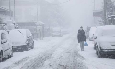 Έκτακτο δελτίο ΕΜΥ: Στο έλεος της «Σοφίας» όλη η χώρα με χιονιά και πολικές θερμοκρασίες (pics)