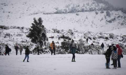 LIVE ΕΙΚΟΝΑ: Ξεκίνησε να χιονίζει και πάλι στην Πάρνηθα