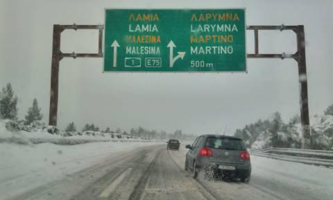 Καιρός: Σφοδρή χιονόπτωση στην Φθιώτιδα – Μάχη για να κρατηθεί ανοιχτή η Εθνική Οδός