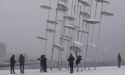 Κακοκαιρία: «Χειρόφρενο» στα λεωφορεία της Θεσσαλονίκης λόγω χιονιά - Δείτε ποιες ώρες