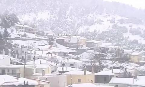 Καιρός: Αποκλεισμένα παραμένουν χωριά στην Εύβοια (vid)