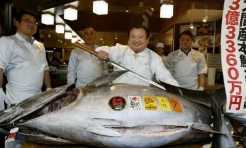 Ιαπωνία: Τόνος πουλήθηκε... 2,7 εκατ. ευρώ σε ιδιοκτήτη εστιατορίου σούσι (video)