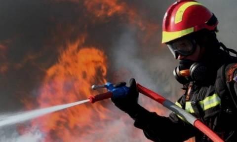 Συναγερμός στη Θεσσαλονίκη: Πυρκαγιά σε συνεργείο αυτοκινήτων -Απεγκλωβίστηκε ένας άνδρας