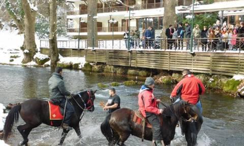 Θεοφάνεια: Με άλογα στον αγιασμό των υδάτων στη Νάουσα (pics)