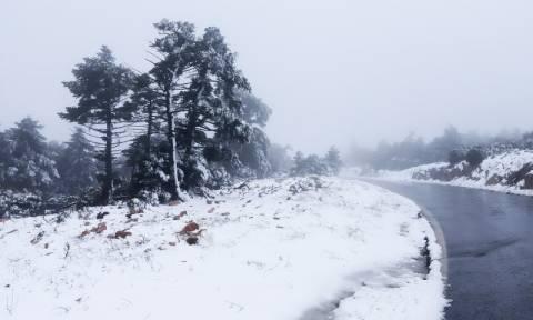 Καιρός: Αρχίζει την επέλασή του ο «Τηλέμαχος» - Χιόνια ακόμα και στην Αθήνα (pics)